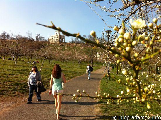 Весна в Праге: девушки надели мини